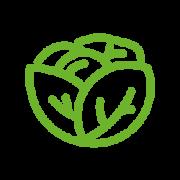 icones-veggietube-04